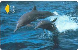 Oman - Dolphins - 50OMNC - 2000, 650.000ex, Used - Oman