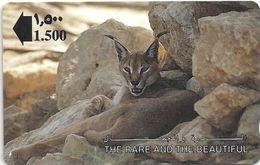 Oman - Lynx, The Rare And The Beautiful, 13OMNA, 1993, 693.000ex, Used - Oman