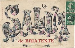 BRIATEXTE   SALUT   CARTE RARE - Labruguière