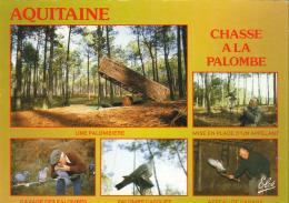 D33  AQUITAINE  Image De France- Chasse à La Palombe  ..... - France