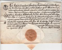 Augusta Vindelicorum, Splendida Fede Di Sanità, Manoscritta Su Carta Pergamena. Anno 1739 - Manuscrits