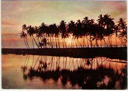 Sri Lanka. Negombo Lagoon . VG. - Sri Lanka (Ceylon)