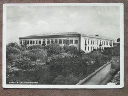 MARSALA -ISTITUTO AGRARIO - 1959 -     --BELLA  - - Otras Ciudades