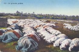 "Palestine British Administration Picture Postcard ""La Grande Priere"" Posted From Jerusalem To Belgium - Islam"