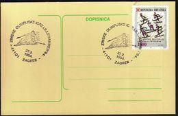 Croatia Zagreb 1994 / Olympic Games Lillehammer 1994 / Alpine Skiing - Invierno 1994: Lillehammer