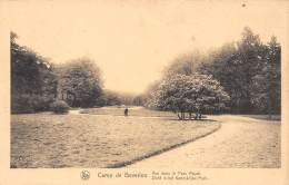 CAMP De BEVERLOO - Vue Dans Le Parc Royal - Leopoldsburg (Camp De Beverloo)