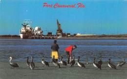 PELICANS Keep The Fishermen Company At CANAVERAL Iniet - Etats-Unis
