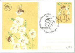 POSTMARKET POLONIA 1987 - Honingbijen
