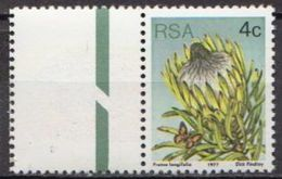 South Africa MNH Stamp - Cactusses