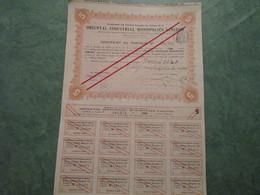 ORIENTAL INDUSTRIAL MONOPOLIES LIMITED . Certificat Au Porteur De 5 Actions - Aandelen