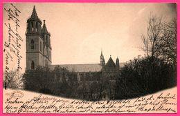 Magdeburg - Dom - HOFFMANN - 1902 - Magdeburg