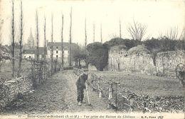 CPA Brie-comte-Robert Vue Prise Des Ruines Du Château - Brie Comte Robert