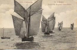 35 St-MALO  Course De Bisquines Cancalaises - Saint Malo