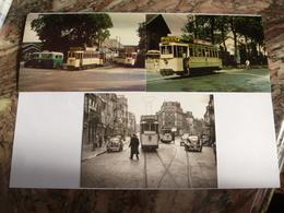 FONTAINEBLEAU : Tramway CTF En 1950 Et 1953 - Lot De 3 CPM - Ligne Fermée Le 31 Décembre 1953 - Détails 2 Scans - Tramways