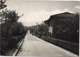 Bieno (Trento) - Viaggiata 1960 - Trento