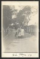 Photo Postcard / Foto / Photograph / Famille / Family / Dog / Chien / 1912 / Unused - Fotografie