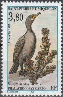 Saint-Pierre & Miquelon 1997 Yvert 642 Neuf ** Cote (2015) 1.70 Euro Oiseau - St.Pierre Et Miquelon