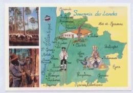 40 SOUVENIRS DES LANDES CARTE MULTIVUES - Cartes Géographiques