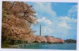 WASHINGTON MONUMENT - Washington DC