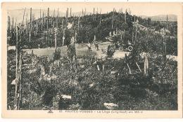 ***  88  ****  Hautes Vosges LE LINGE - Neuve TTB - Autres Communes