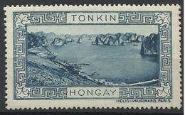 Indochine Tonkin Vignette Erinnophilie HONGAY Bleue - Indochina (1889-1945)