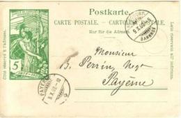 UPU 1900 Karte 5c Grün Mit Stempel BURGDORF 9.X.00 Nach Payèrne - Entiers Postaux