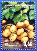 CROATIA BOSNIA AND HERZEGOVINA HERCEG BOSNA MOSTAR VEGETABLES POTATO (Solanum Tuberosum) 2008 - MNH - Bosnia And Herzegovina