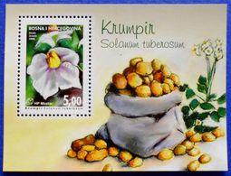 CROATIA BOSNIA AND HERZEGOVINA HERCEG BOSNA MOSTAR VEGETABLES POTATO (Solanum Tuberosum) 2008 - MNH BLOCK - Bosnia And Herzegovina