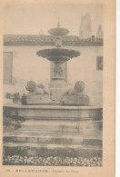 30 // BELLEGARDE    Fontaine Des Lions  267 - Bellegarde