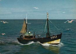 BELGIUM - Retour De Peche 1970's - Fishing Boat - Oostende
