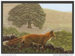 Renard Tapada De Mafra Portugal Carte Postale CPM Fox Postcard - Autres