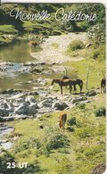 """NEW CALEDONIA(chip) - Horses, Vallee D""""Ateou, Tirage 30000, 04/00, Used - New Caledonia"""