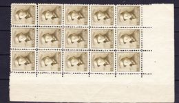 België, 1919, Kleine Verzameling Nr 166 Veldeel ** Zeer Mooi Lot K695,  KOOPJE Bieden Vanaf 1.50 € - Timbres