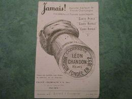 Champagne LEON CHANDON - Farm