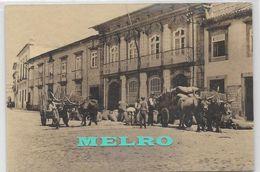 PORTUGAL- Braga - Carros De Bois - Braga