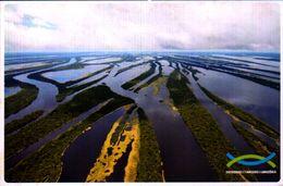 BRASIL, AMAZONAS, UN DOS MAIORES ARQUIPELAGOS FLUVIAIS DO PLANETA  [41772] - Manaus