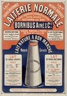 Laiterie Normale Bornibus Ainé & C.ie 1879 - Postcard - Poster Reproduction - Publicité
