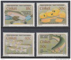 D110301 Ciskei 1989 South Africa TROUT FARMING FISH MNH Set - Afrique Du Sud Afrika RSA Sudafrika - Ciskei
