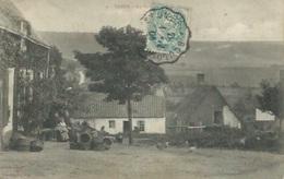 Samer - La Basse Cour - Samer