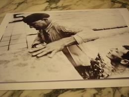 PHOTOGRAPHIE  JEAN BOITEUX JO D HELSINKI 1952 - Natation