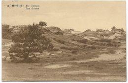 HECHTEL : Les Dunes - Hechtel-Eksel