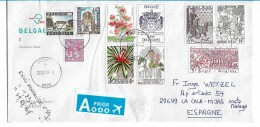 B251  / BELGIEN -  Brief Mit/ Buntfrankatur  Mit 10 Marken - Belgium