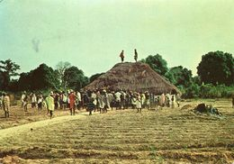 Guinea Bissau - Choro - Guinea-Bissau