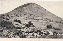 Samarie - Mont Tabor  (102758) - Palästina
