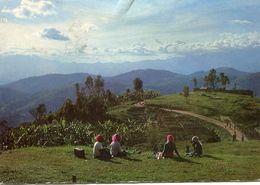 Rwanda - The Volcanoes Seen From Remera - Rwanda