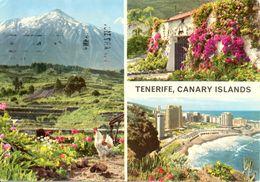 Canaries - Tenerife - Multivues - John Hinde Nº 2CT40 - Ecrite, Timbrée - 5049 - Tenerife
