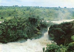 Uganda - Murchison Falls - Uganda