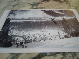 PHOTOGRAPHIE TULLIN THAMS JO DE CHAMONIX 1924 - Winter Sports