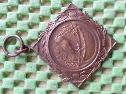 Medaille / Medal - Zangvogel 3 Na M. Stam 1959 / Songbird / Oiseau Chanteur - Pays-Bas