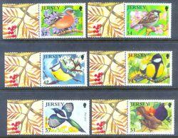 A196- Jersey 2007. Garden Birds - Birds